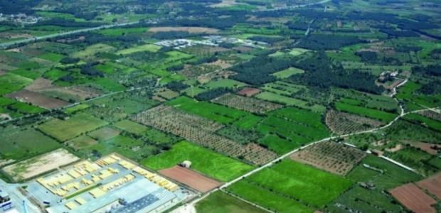 Polígon Industrial del Pla de Santa Maria (Alt Camp)